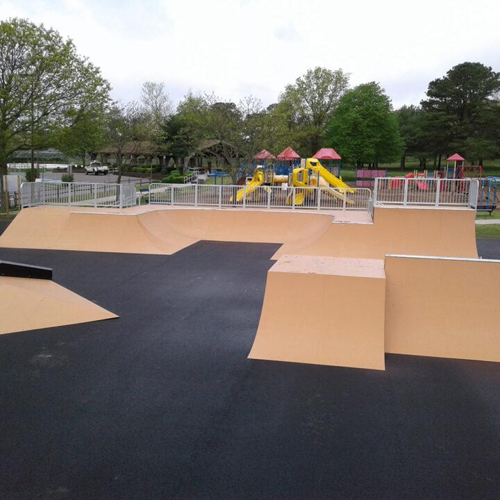 Zone X Skate